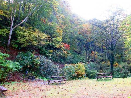山の秋10
