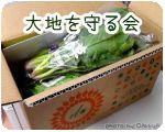 大地を守る会 おためし野菜セット【980円】
