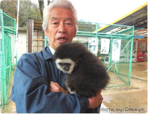 志村動物園 瀧本美織のシロテテナガザル ももたろう と園長