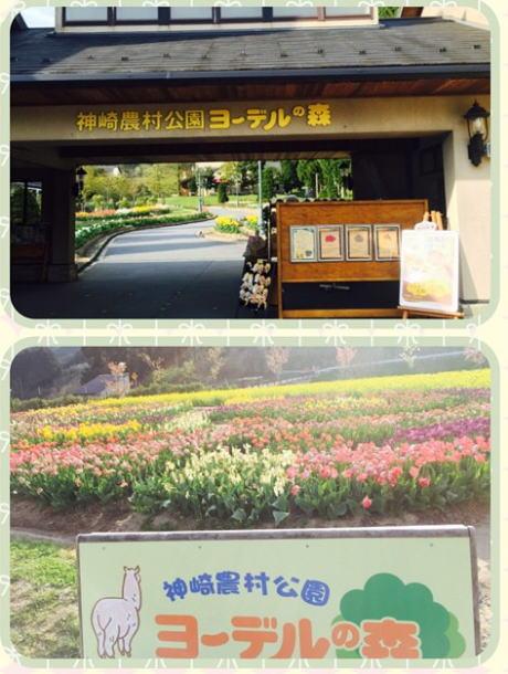 神埼農村公園ヨーデルの森