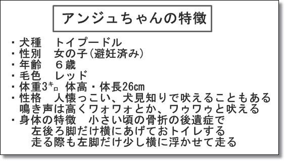 0042IMG_8883.jpg