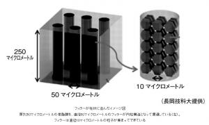 Nagaoka_tech_univ_filler_image.jpg
