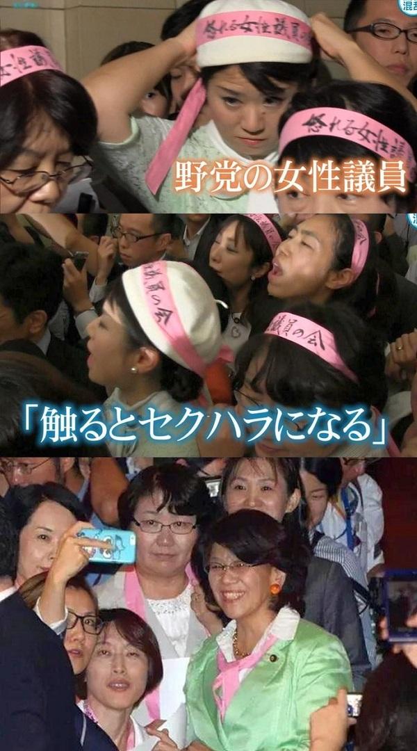 野党は9月16日、バリケード代わりに福島瑞穂や辻元清美らの女の壁を作り「触るな!セクハラだ!」と絶叫する作戦で16日の採決を阻止した。