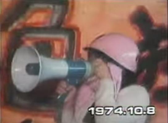 ピンクの鉢巻は、かつての「中ピ連」(「中絶禁止法に反対しピル解禁を要求する女性解放連合」)のキチガイ婆どものピンクのヘルメットを彷彿させる。