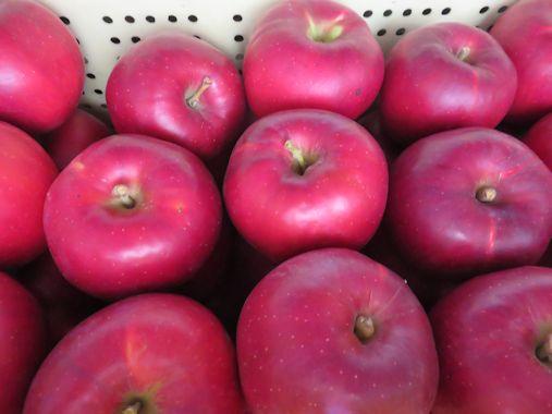 紅玉リンゴ
