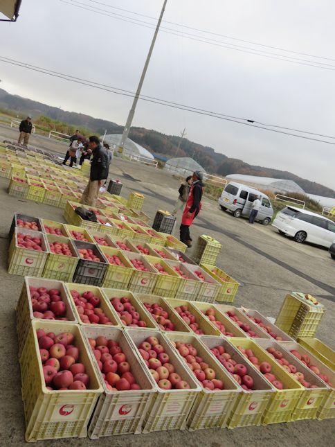リンゴの即売会