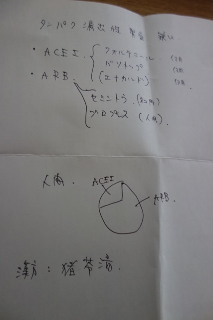 DSC02829.jpg