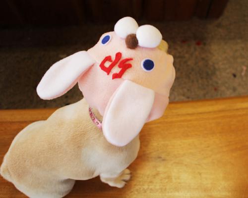 ネックウォ-マ-にもなる犬ヅラ3