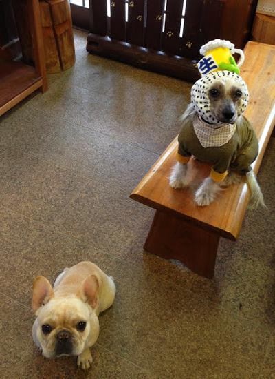 犬ヅラ(犬のかぶりものショップ)