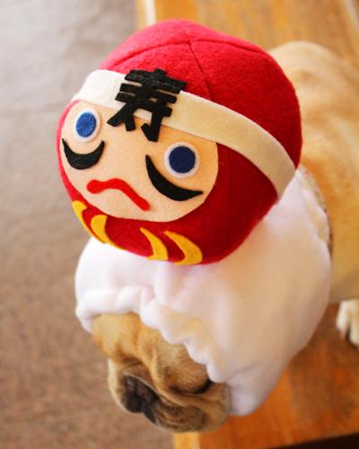 犬ヅラの文字はすべて手切りのハンドメイド3