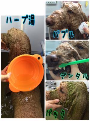 リンジー風呂_convert_20151113185601