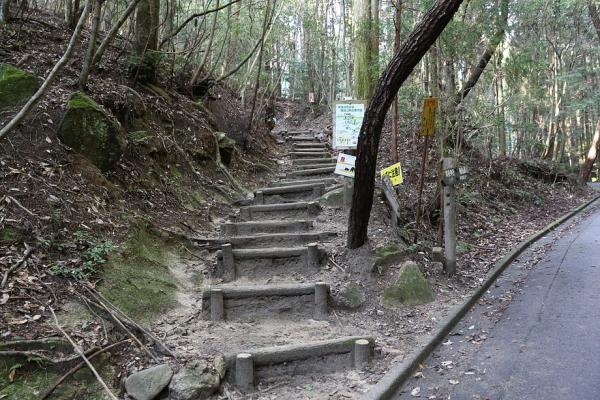 登山道の入口はここ