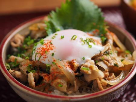 海苔豚丼07