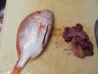連子鯛のフライパン蒸し35