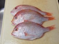 連子鯛のフライパン蒸し36