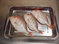 連子鯛のフライパン蒸し38