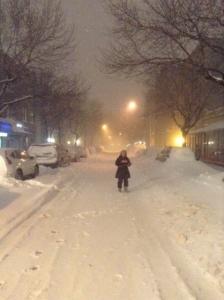 NY_大雪