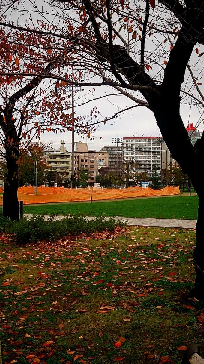 錦糸公園_20151126