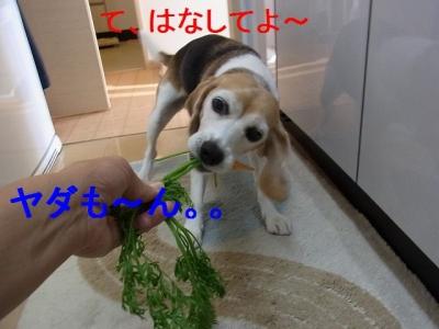 03_20151021125931833.jpg