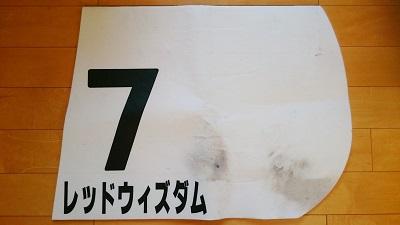DSC_0607-01.jpeg