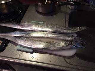 s-太刀魚