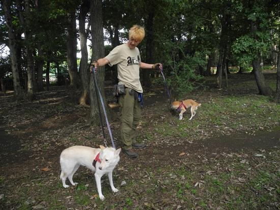 20150920 ニケ、森へ (25)