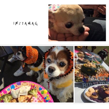 fc2blog_20151018224154386.jpg