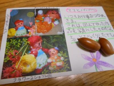 M_studiomimosaマドン2