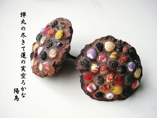 AYAKO蓮の実