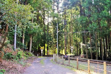 森の中の踏切
