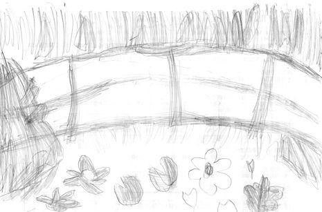 ヒカルの睡蓮の池