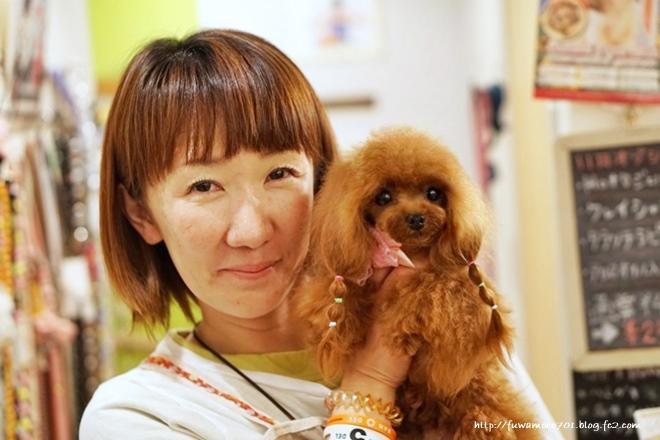 チビプードル☆モコの毎日 みるく小島さんと