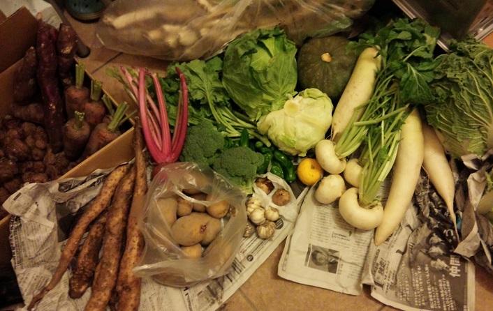 2015.11実家の野菜