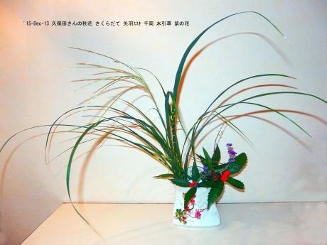久保田さんの花3