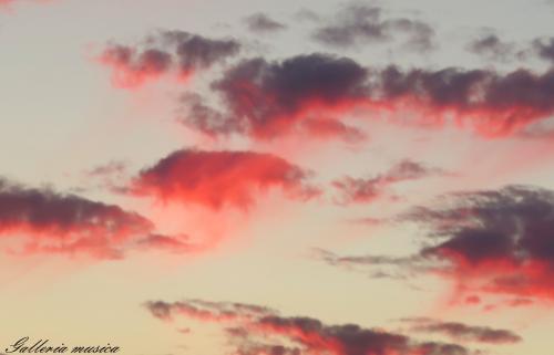 雲のかたち。7