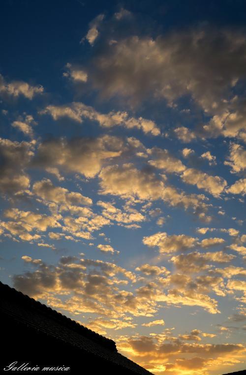 雲のかたち。8