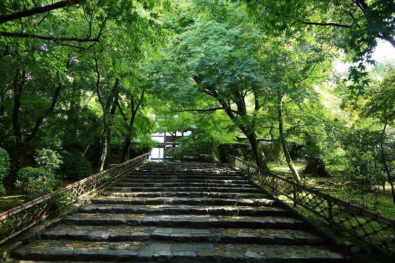 竜安寺 階段