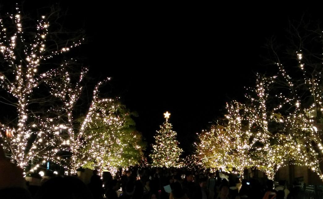 20151203クリスマス