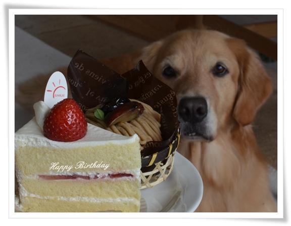 ケーキ食べます201509