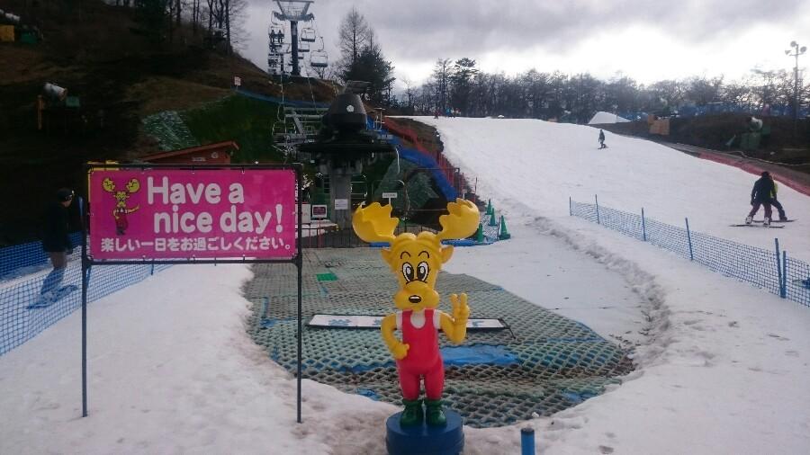 県 予報 量 新潟 降雪