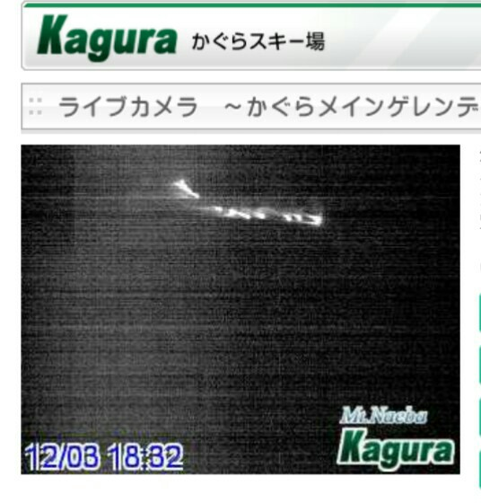 新潟 県 降雪 量 予報