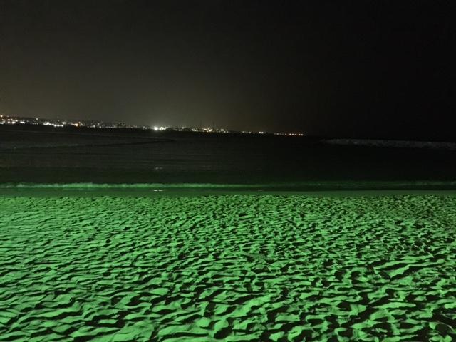 アメリカンビレッジ海