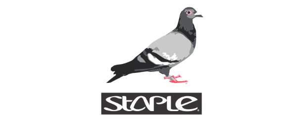 staple-pigeon.jpg
