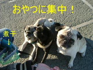 2006_1101kawa0002b_201510102112527e4.jpg