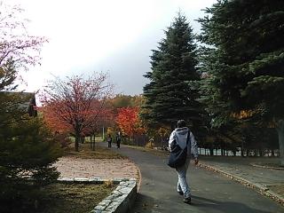 DSC_5354.jpg