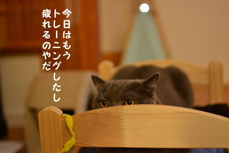 DSC_3199.jpg