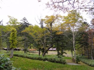 藻琴山 095