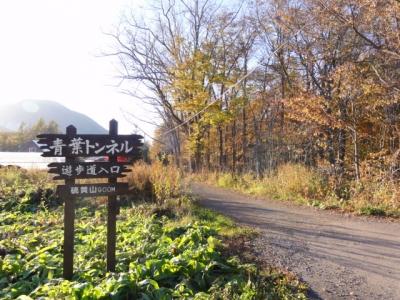 西別岳 091