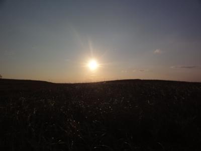 春採湖 091