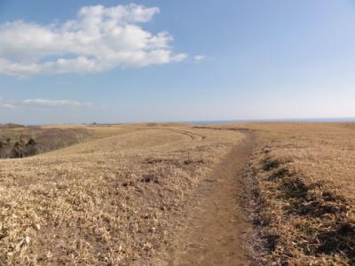 春採湖 138
